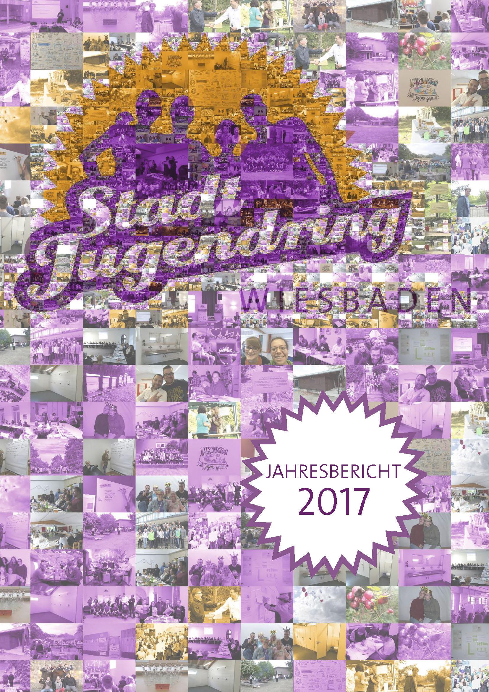 SJR Jahresbericht 2017